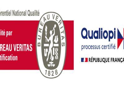 Para professionnel - Cursus